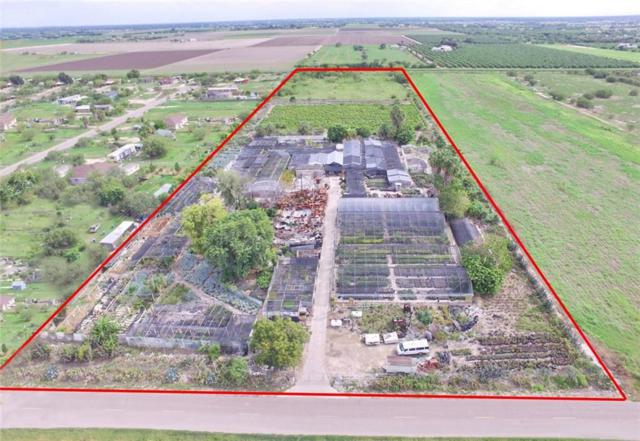 417 Wisconsin Road, Donna, TX 78537 (MLS #304312) :: HSRGV Group