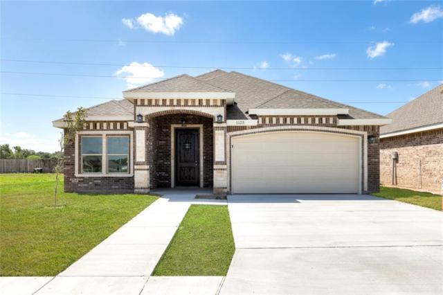 1123 Palazzo Drive, Alamo, TX 78516 (MLS #304314) :: The Ryan & Brian Real Estate Team