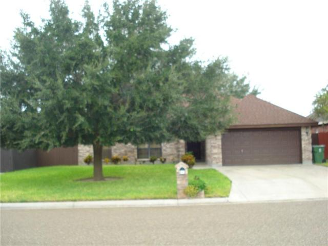 845 Brady Avenue, Alamo, TX 78516 (MLS #304443) :: Jinks Realty
