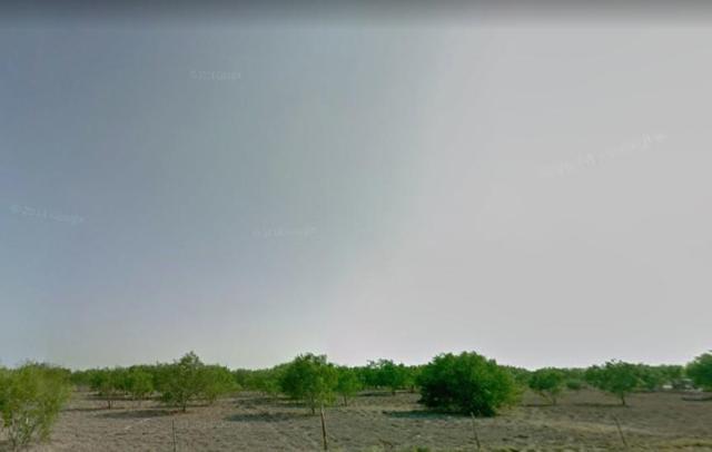 4 Mile N Tom Gill Road, Penitas, TX 78576 (MLS #304577) :: The Lucas Sanchez Real Estate Team