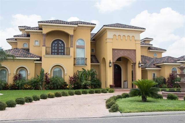 4101 Palmetto Palm Street Lot 6, Palmhurst, TX 78573 (MLS #304900) :: Jinks Realty