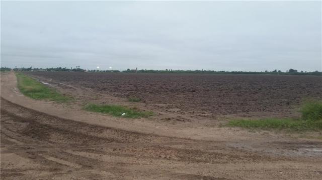 00 S Gonzalez Road, Progreso, TX 78596 (MLS #305220) :: The Ryan & Brian Real Estate Team