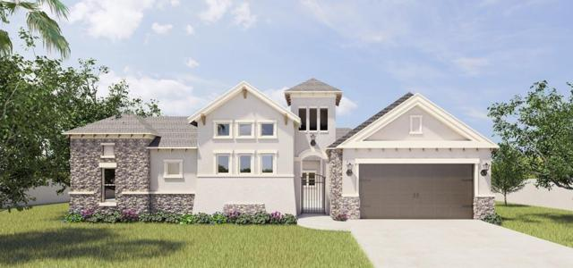 4433 Caddo Lane, Mcallen, TX 78504 (MLS #305221) :: The Deldi Ortegon Group and Keller Williams Realty RGV
