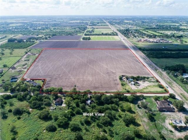 0 S Curve Road, Donna, TX 78537 (MLS #305239) :: Jinks Realty