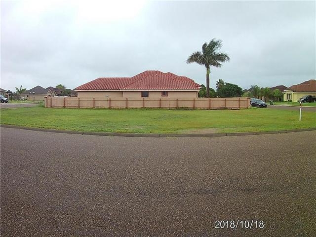 TBD Hector Drive, Alamo, TX 78577 (MLS #305251) :: The Ryan & Brian Real Estate Team