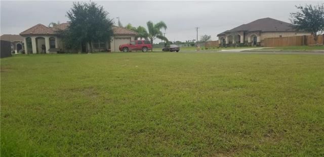 2209 Brightwood Avenue, Weslaco, TX 78596 (MLS #305277) :: Jinks Realty