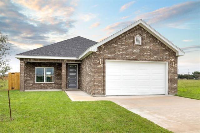 1120 Grandeur Drive, Alamo, TX 78516 (MLS #305333) :: Jinks Realty