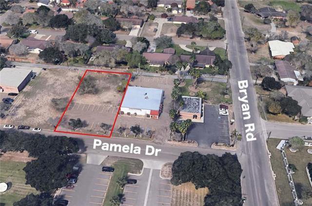 1107 Pamela Drive, Mission, TX 78572 (MLS #305549) :: Jinks Realty
