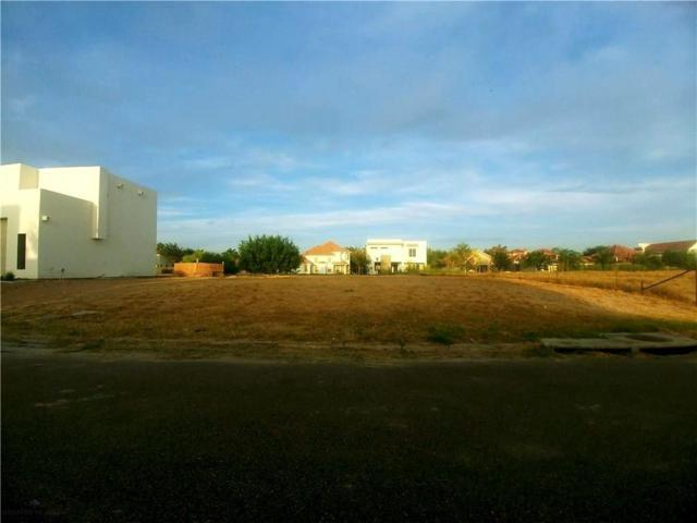 2305 S 49th Street, Mcallen, TX 78573 (MLS #305784) :: The Ryan & Brian Real Estate Team