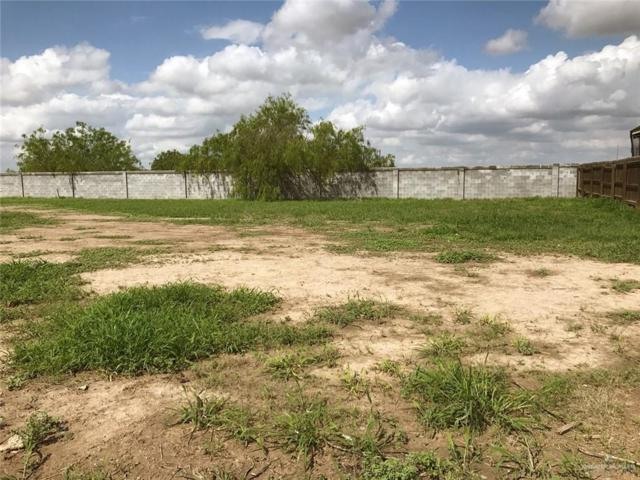 000 Coma Avenue, Hidalgo, TX 78557 (MLS #305963) :: The Ryan & Brian Real Estate Team