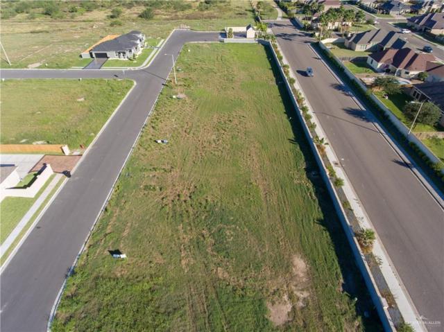 3601 Vendome Drive, Mcallen, TX 78504 (MLS #306182) :: Jinks Realty