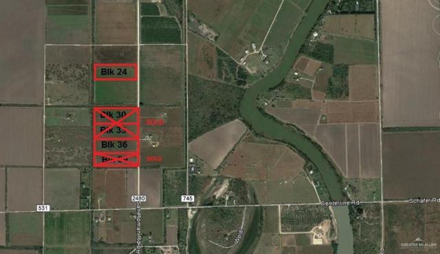 TR 36 San Roman Road, Bayview, TX 78566 (MLS #306306) :: BIG Realty
