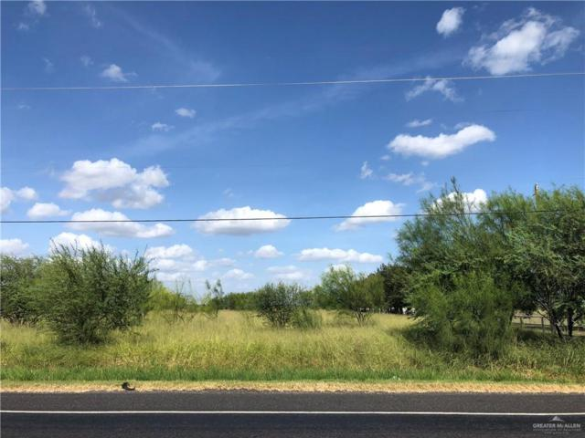 00 N Fm 493, Edinburg, TX 78542 (MLS #306349) :: The Lucas Sanchez Real Estate Team