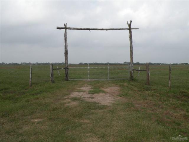 0 NE Cr 15 Aka Davila Road NE, Hargill, TX 78549 (MLS #306351) :: Jinks Realty