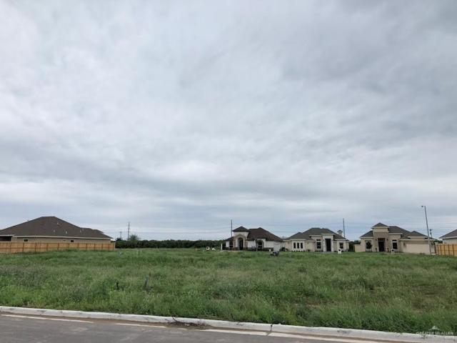 903 W Cheyenne Avenue, Pharr, TX 78577 (MLS #306418) :: Jinks Realty