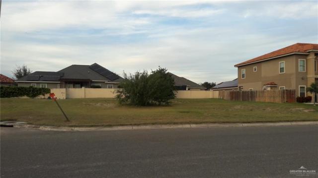 1201 E Olympia Avenue E, Mcallen, TX 78503 (MLS #306603) :: Jinks Realty