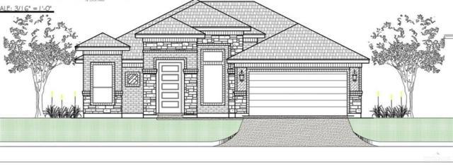 1212 Boulder Drive, Alamo, TX 78516 (MLS #306840) :: The Ryan & Brian Real Estate Team
