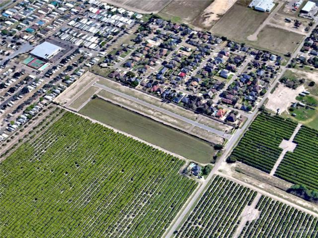 0000 Minnesota Road, Pharr, TX 78577 (MLS #307033) :: The Lucas Sanchez Real Estate Team