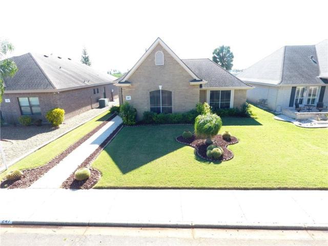 247 W Karen Drive, Alamo, TX 78516 (MLS #307151) :: The Ryan & Brian Real Estate Team