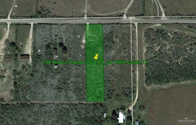 Orange Grove, TX 78372 :: Jinks Realty