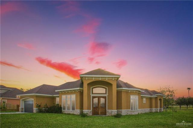 12417 Lakeview Drive, Edinburg, TX 78541 (MLS #307282) :: The Ryan & Brian Real Estate Team