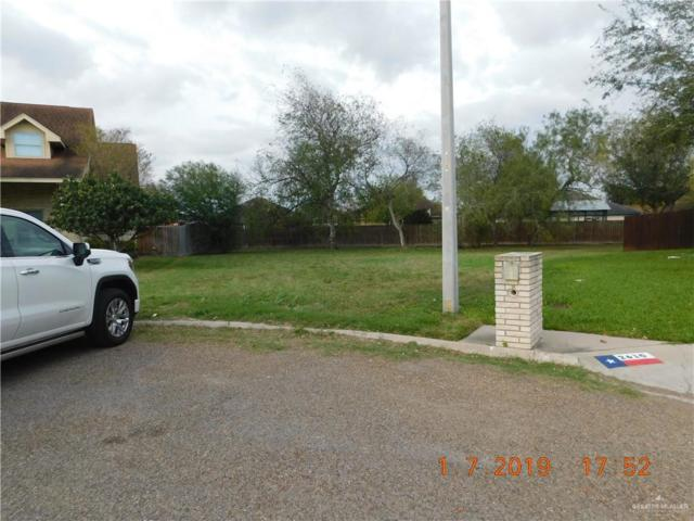 2604 Sydney Avenue, Edinburg, TX 78539 (MLS #307760) :: Jinks Realty