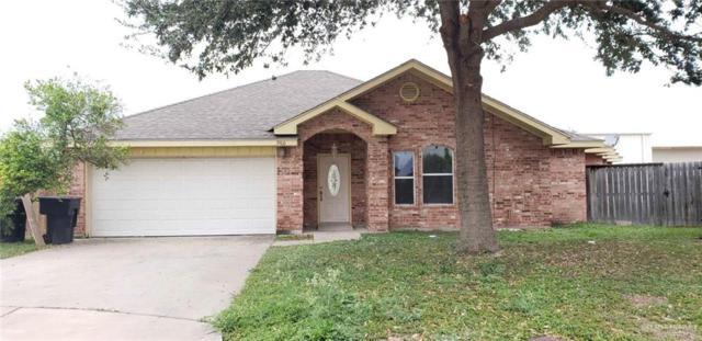 3900 Dunlin Avenue, Mcallen, TX 78504 (MLS #307964) :: Jinks Realty