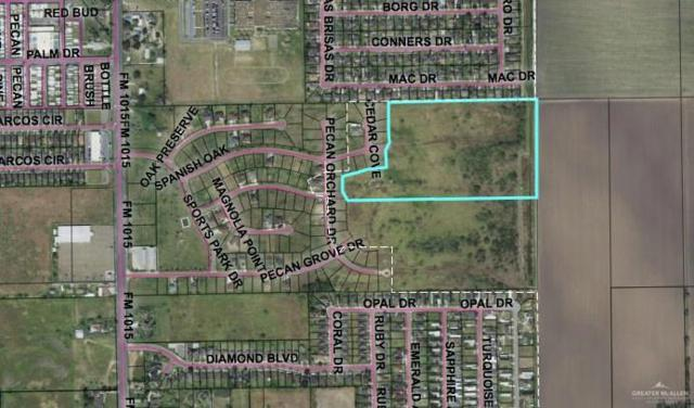 000 Mile 8 Road N, Weslaco, TX 78599 (MLS #307986) :: eReal Estate Depot