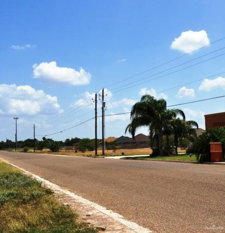 3723 S Border Avenue, Weslaco, TX 78596 (MLS #308000) :: Jinks Realty