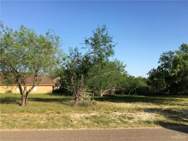 425 N Kika De La Garza Boulevard, La Joya, TX 78560 (MLS #309372) :: The Ryan & Brian Real Estate Team