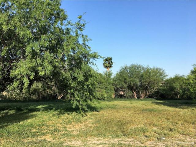509 N Kika De La Garza Boulevard, La Joya, TX 78560 (MLS #309375) :: The Ryan & Brian Real Estate Team
