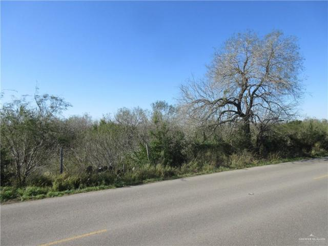 0 LOT 21 Abram Road, Mission, TX 78574 (MLS #309428) :: The Ryan & Brian Real Estate Team