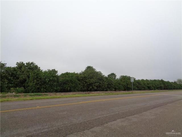 3 1/2 mi. N Taylor Road, Palmhurst, TX 78573 (MLS #310561) :: HSRGV Group