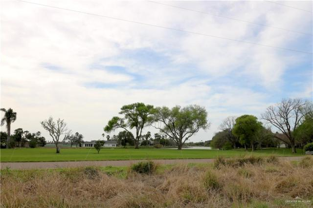 000 N Lion Lake Drive, Progreso Lakes, TX 78596 (MLS #310647) :: The Ryan & Brian Real Estate Team