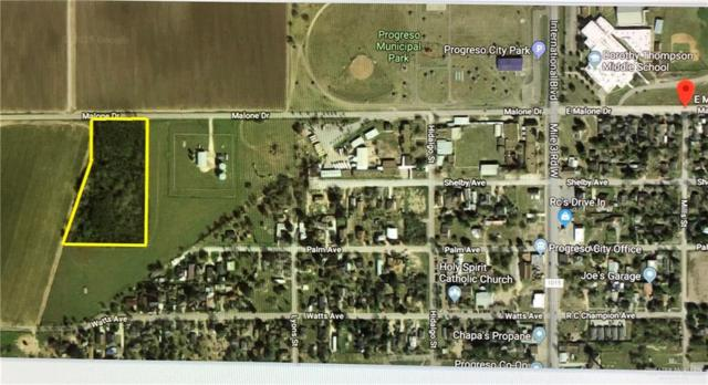 000 W Malone Drive, Progreso, TX 78596 (MLS #310838) :: The Ryan & Brian Real Estate Team