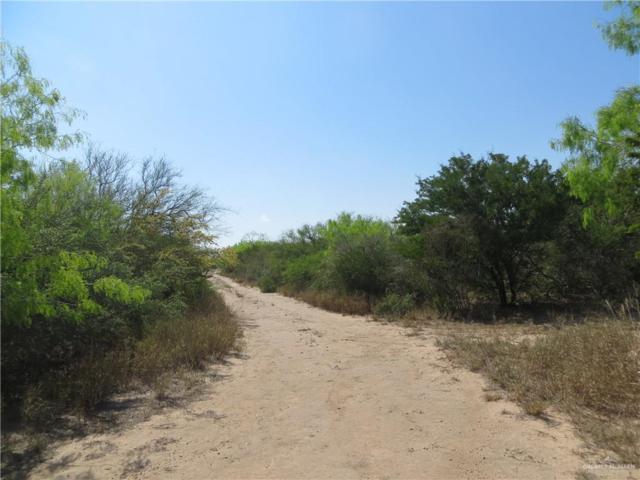 0 Fm 2844, San Isidro, TX 78582 (MLS #311554) :: The Ryan & Brian Real Estate Team