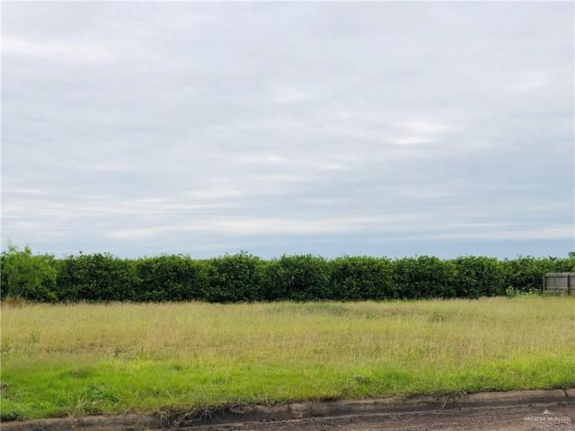 2313 Jessica Drive, San Juan, TX 78589 (MLS #311809) :: BIG Realty