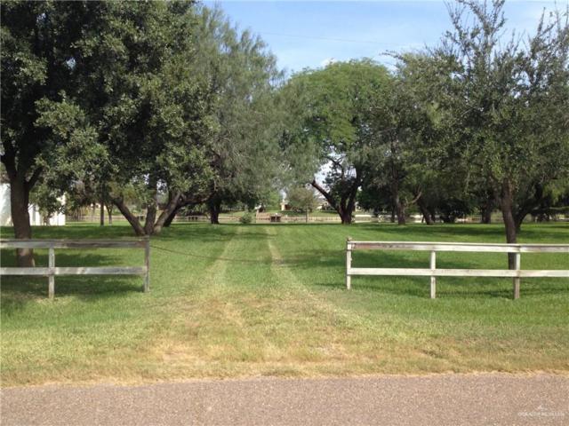 1261 S Lion Lake Drive, Progreso Lakes, TX 78596 (MLS #311832) :: HSRGV Group