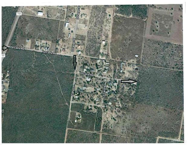000 E La Carla Road E, Rio Grande City, TX 78582 (MLS #311853) :: HSRGV Group