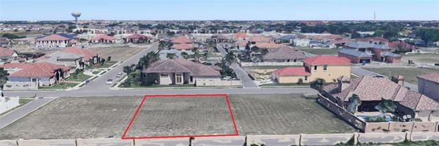 4809 Sheffield Street, Edinburg, TX 78539 (MLS #313012) :: Realty Executives Rio Grande Valley