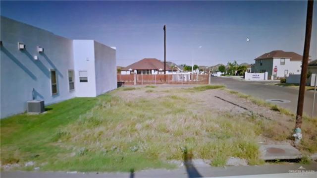 1010 Rio Balsas, Mission, TX 78572 (MLS #313548) :: The Ryan & Brian Real Estate Team