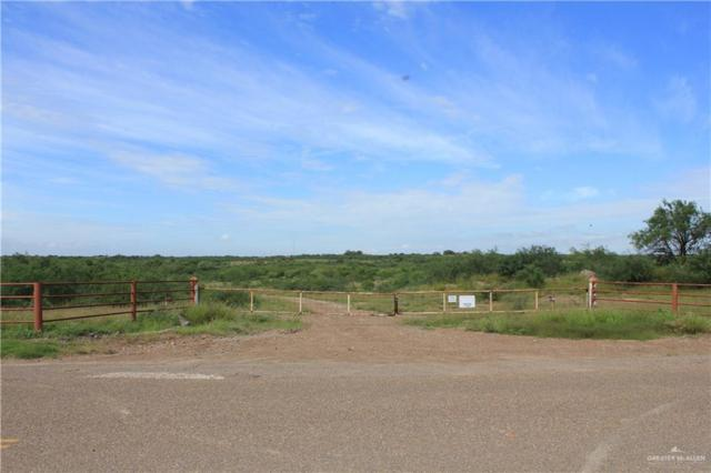 00 S Guadalupe Flores Street, Sullivan City, TX 78595 (MLS #313914) :: The Maggie Harris Team