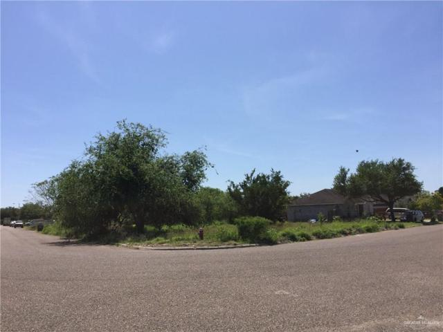 118 Amber Drive, Weslaco, TX 78596 (MLS #313923) :: The Ryan & Brian Real Estate Team