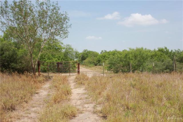 00 N El Pinto Road, Sullivan City, TX 78595 (MLS #313926) :: The Maggie Harris Team
