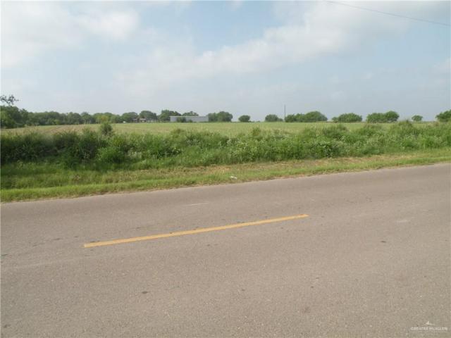 0 NE Nittler Road NE, Hargill, TX 78549 (MLS #313996) :: HSRGV Group