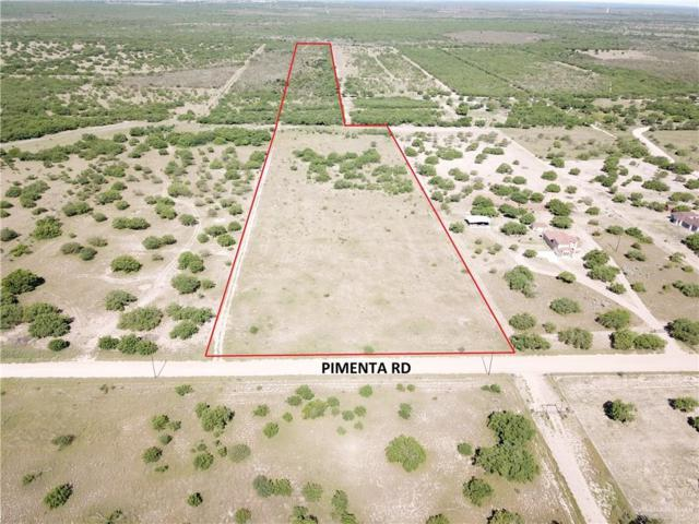 00 Pimenta Road, Rio Grande City, TX 78582 (MLS #314027) :: Realty Executives Rio Grande Valley