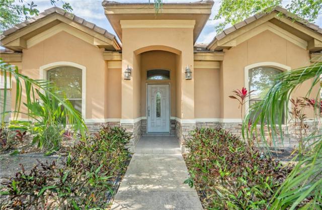 613 E Thornhill Avenue, Mcallen, TX 78503 (MLS #314341) :: The Ryan & Brian Real Estate Team