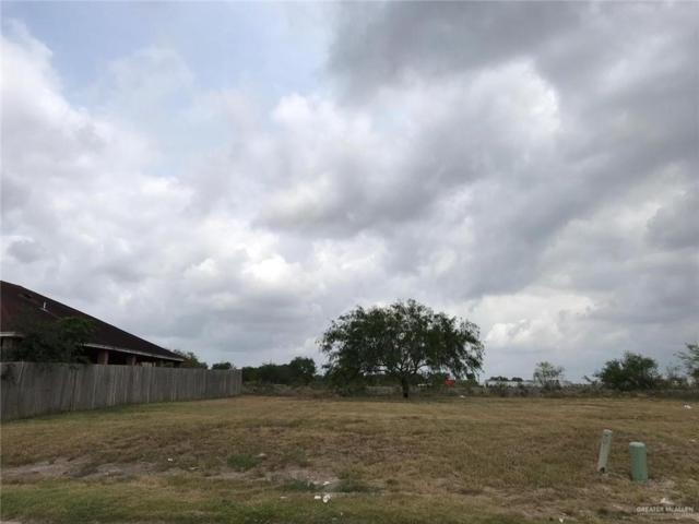 0 Laguna Madre Drive, Brownsville, TX 78521 (MLS #314914) :: HSRGV Group