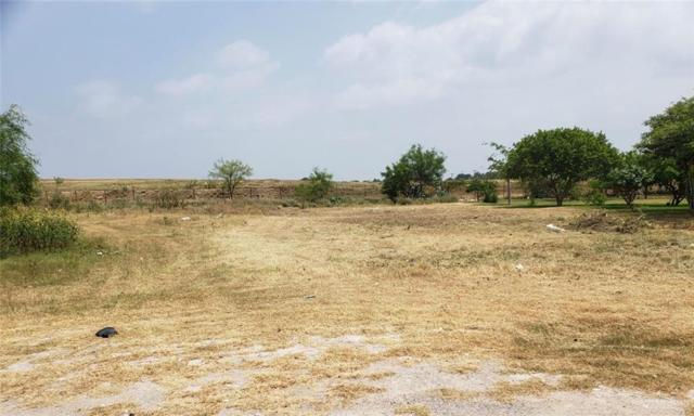 0000 Blue Rock Road, Mission, TX 78573 (MLS #314972) :: HSRGV Group