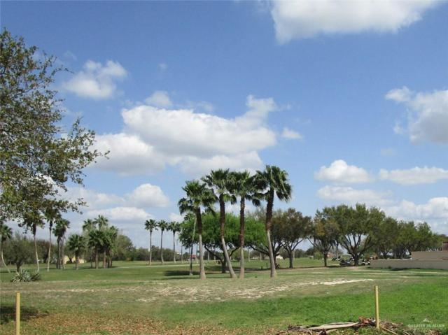 2205 Pecos Street, Mission, TX 78572 (MLS #315042) :: eReal Estate Depot